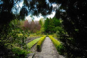 Part of the beautiful formal gardens at Linda Vista