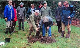 tree planting in Usk