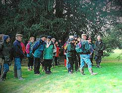 A guided walk